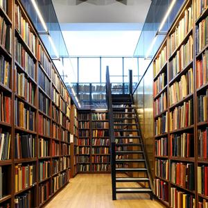 Библиотеки Судогды